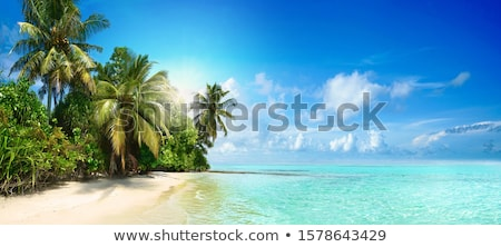 Stockfoto: Caribbean · turkoois · strand · perfect · zee