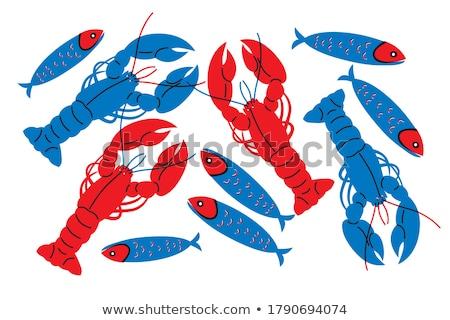 kreeft · mariene · voedsel · illustratie · helling - stockfoto © robuart