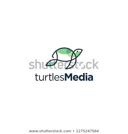 カメ ロゴ ベクトル にログイン シンボル ストックフォト © blaskorizov