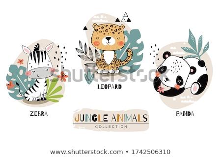 cartoon leopard sitting stock photo © cthoman