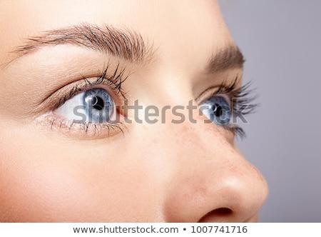 macro · tiro · belo · feminino · azul · olho - foto stock © doodko