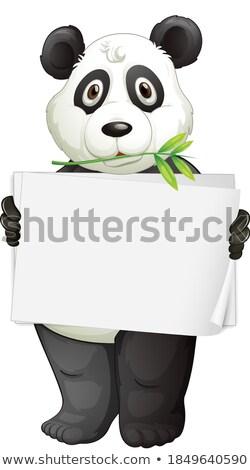 panda · nota · sjabloon · illustratie · textuur · achtergrond - stockfoto © bluering