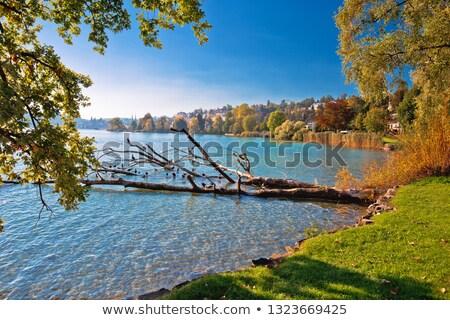 Lago idílico verão ver paisagem Foto stock © xbrchx