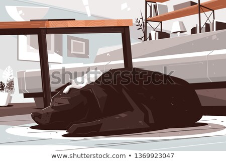 Stock photo: Sleepy dog and cat daydreaming in living room