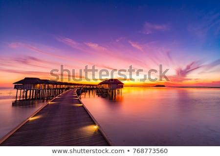 Maldív-szigetek · fából · készült · gyönyörű · tengerpart · kék · ég · felhők - stock fotó © fyletto