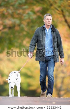 Foto d'archivio: Omo · che · cammina · cane · attraverso · il · parco · d'autunno · ascoltando · il · lettore · Mp3