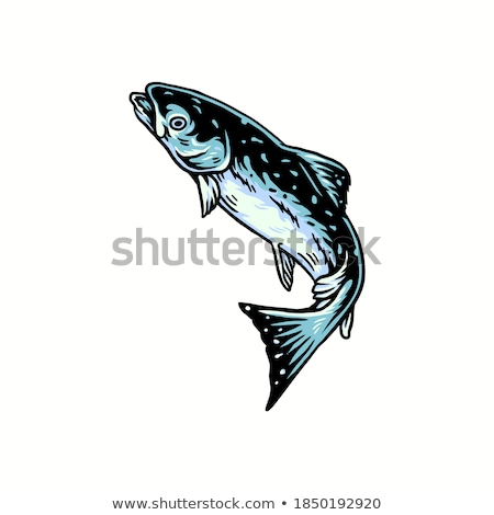 Nautical Fish Specie Color Vector Illustration Stock photo © robuart