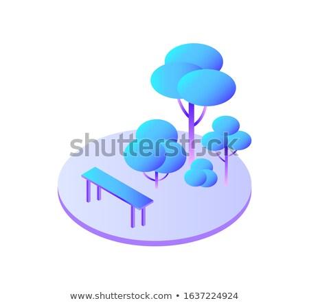 деревья лес скамейке сидеть икона Сток-фото © robuart