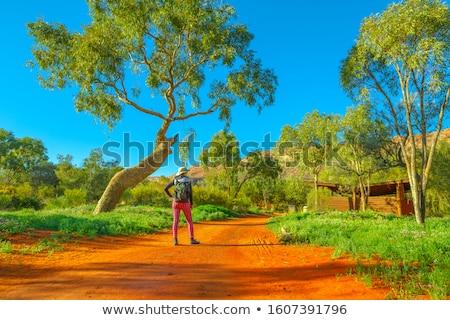 Woman in a desert landscape in outback Australia Stock photo © lovleah