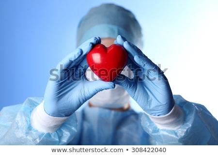 surgeon doctor with human organs for transplantation Stock photo © adrenalina