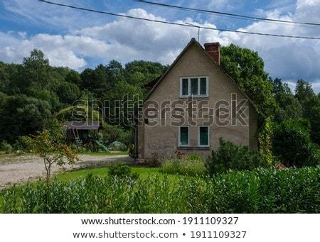 Rural uninhabited Ukrainian house  Stock photo © vavlt