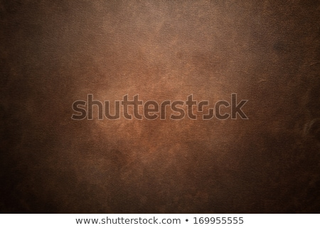 Old Grunge Leather Background Or Texture stock photo © tarczas
