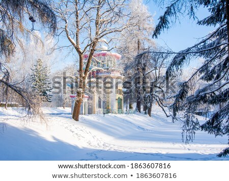 Winter sunny snowy  landscape in garden Pushkin, Stock photo © Pilgrimego