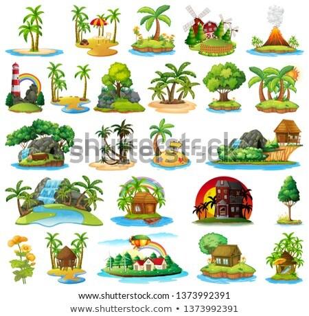 набор Тропический остров иллюстрация воды морем фон Сток-фото © bluering