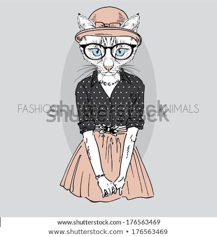 Vektor elegáns nő macskák fej rajz Stock fotó © netkov1