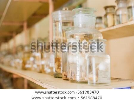 Marine animals preserved alcohol in glass tubes Stock photo © galitskaya
