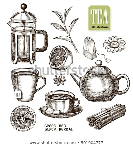 Cup with tea bag hand drawn sketch icon. Stock photo © RAStudio
