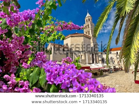 Old Split roman ruins and cathedral view through flower and palm Stock photo © xbrchx
