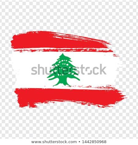 Ливан стране силуэта флаг изолированный белый Сток-фото © evgeny89