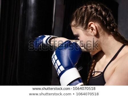 Gyönyörű egyéves boxoló színes vicces barát Stock fotó © rcarner