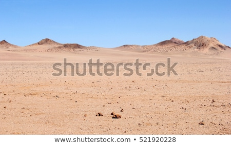 Desolate Desert View Stock photo © jkraft5