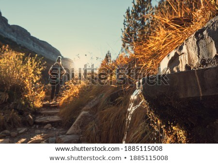 Belle vert paysage Espagne naturelles fontaine Photo stock © Imaagio