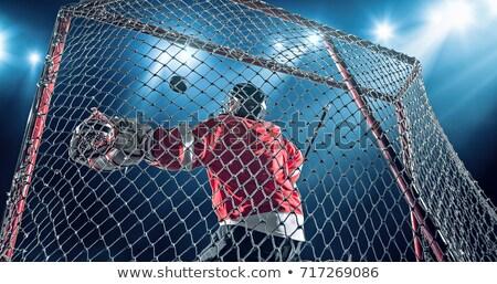 Jégkorong gól tavacska jég pálya sport Stock fotó © Anterovium