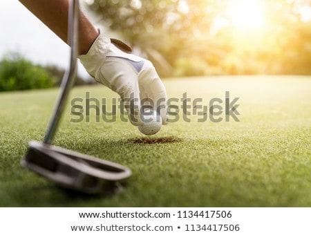 гольфист · мяч · для · гольфа · гольф · трава · спорт - Сток-фото © kzenon
