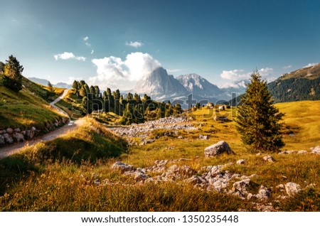 Seceda mountain with blue grass and wooden houses Stock photo © frimufilms