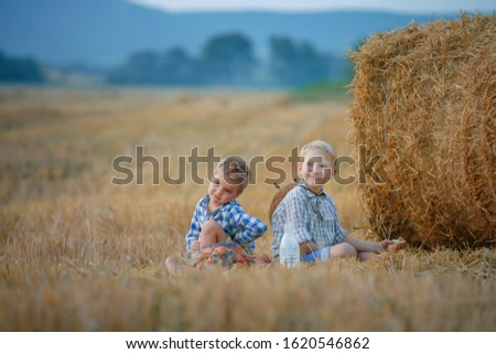 Two children sitting in a field of mown wheat near a pile of hay Stock photo © ElenaBatkova