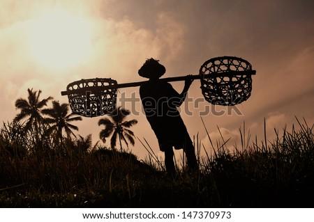 man is a traveler in a rice paddy in ubud bali indonesia stock photo © galitskaya
