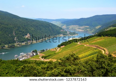 view to river Rhine in Hesse Stock photo © meinzahn