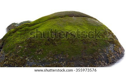 sea stones with green moss stock photo © 5xinc