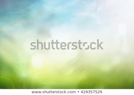 Milieu dag kaart groene natuur landschap Stockfoto © cienpies