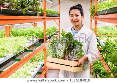 Pretty Asian female agronomist with packed fresh organic food moving along aisle Stock photo © pressmaster