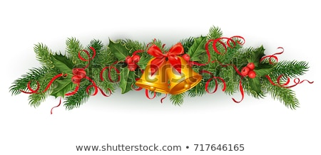 Mistletoe and Pine Tree Branch with Ribbon Bow Stock photo © robuart