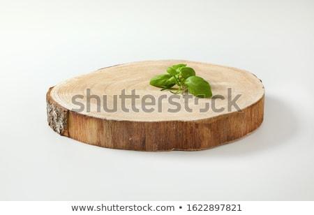 Natural live edge round wood slab Stock photo © Digifoodstock