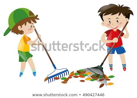 мальчика листьев грабли белый иллюстрация улыбка Сток-фото © bluering