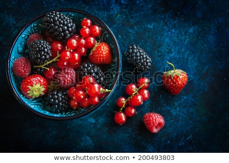 row of wild berries in bowls stock photo © rob_stark