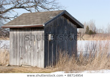 Old Weathered Board and Batten Shed with Birdhouse Stock photo © mackflix