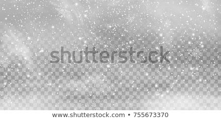 fiocco · di · neve · neve · copia · spazio · inverno · blu - foto d'archivio © volksgrafik