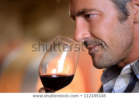 Man wine tasting in cellar Stock photo © photography33