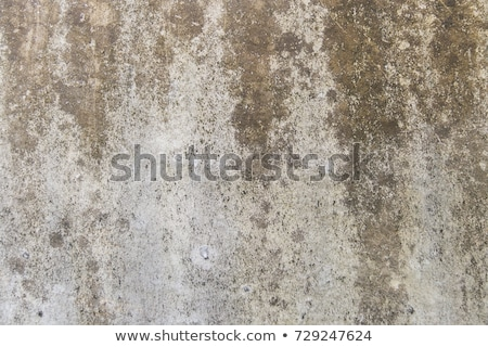 Stock photo: grunge brown exposed concrete wall texture