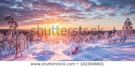 Göl kuzey İskandinavya yaz doğa dağ Stok fotoğraf © ildi