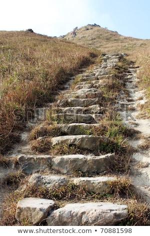 Path Through Mountains Stone Step Close Up Foto d'archivio © cozyta