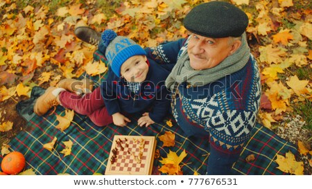 grandparents playing with child under tree in park stock photo © diego_cervo