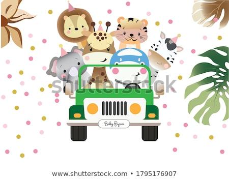 Kinderachtig wenskaart zebra verjaardag achtergrond leuk Stockfoto © balasoiu