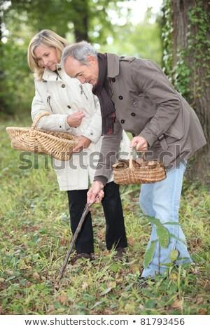 Középkorú pár gyűlés gombák étel fű Stock fotó © photography33