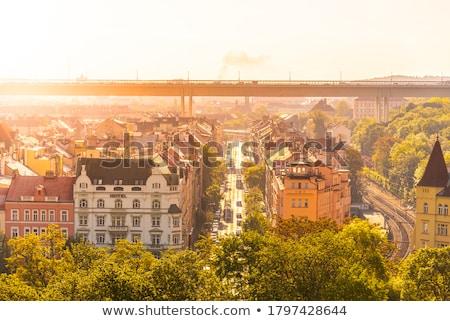 Prag panorama eski şehir yeşil Stok fotoğraf © michey