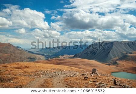 Berg vuile weg heldere blauwe hemel planten Stockfoto © Antonio-S